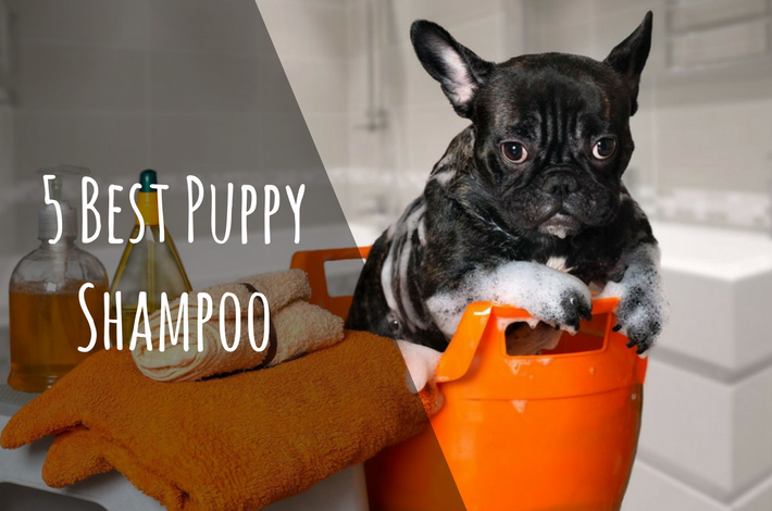 puppy shampoo reviews