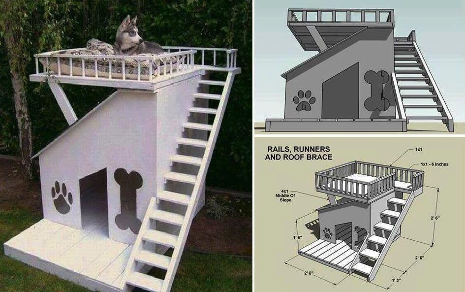 Top Deck/Side Porch Dog House