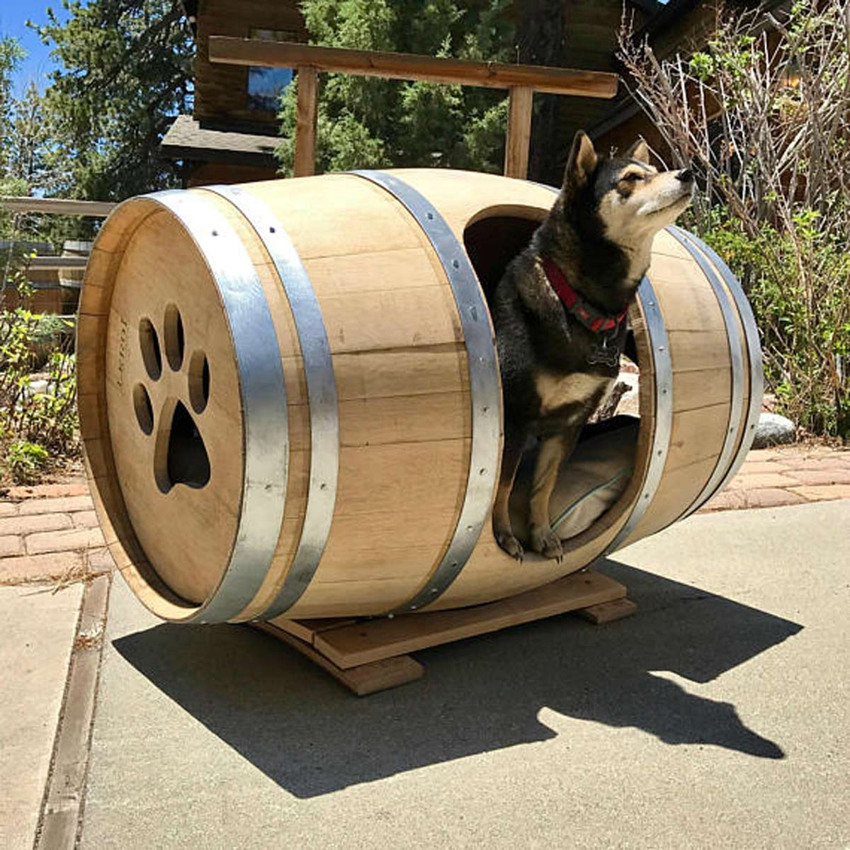Barrel Dog House Designs