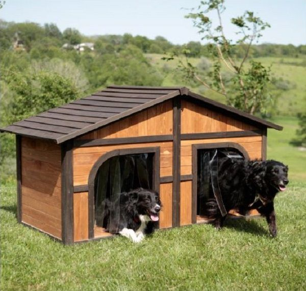 Double or Duplex Dog House