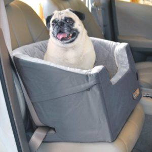 chewy dog car seats