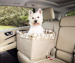 safest dog car seat