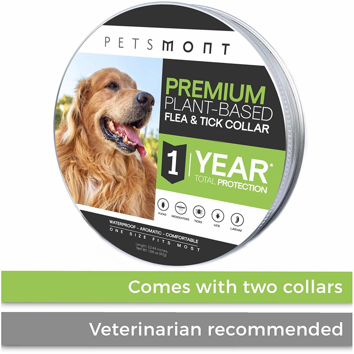 Seresto Flea And Tick Dog Collar And It S Alternatives